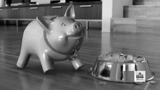 CSOB Pig